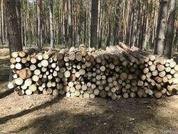 дрова чернівці