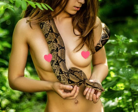 Змея, аренда для фотосессий, фото и видео съёмка