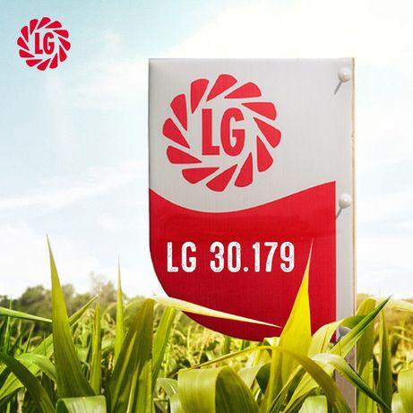 Kukurydza LG 30.179