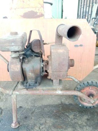 Moto bomba com carrinho mão
