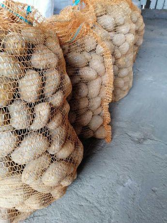 Ziemniaki z uprawy ekologicznej