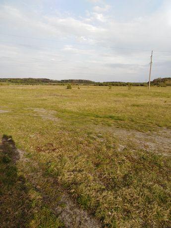 Терміново продам приватизовану земельну ділянку під забудову