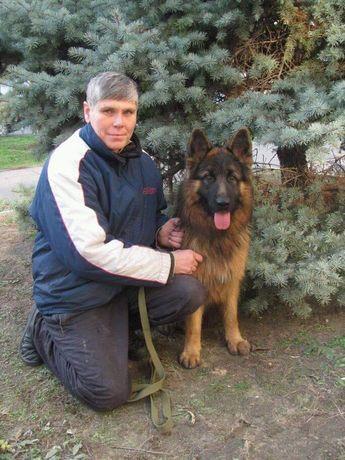 Дрессировка собак в Новой Каховке