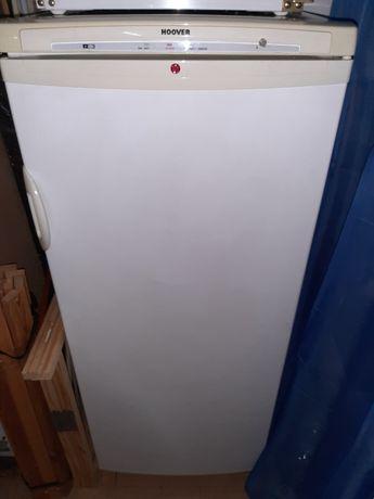 Arca congelador vertical
