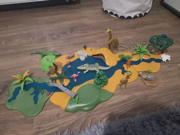 Playmobil safarii duzy zestaw