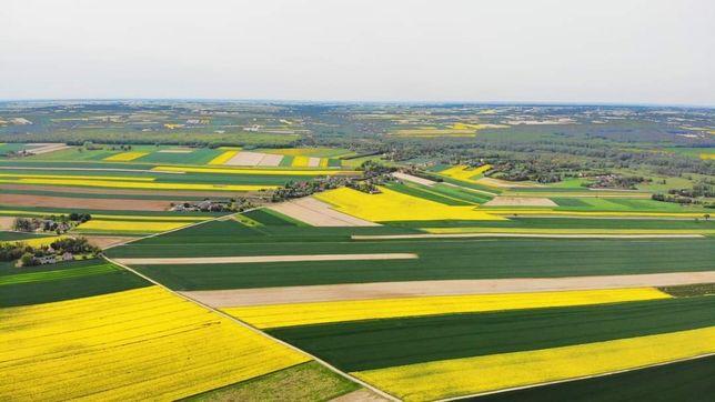 Dzierżawa ziemi rolnej
