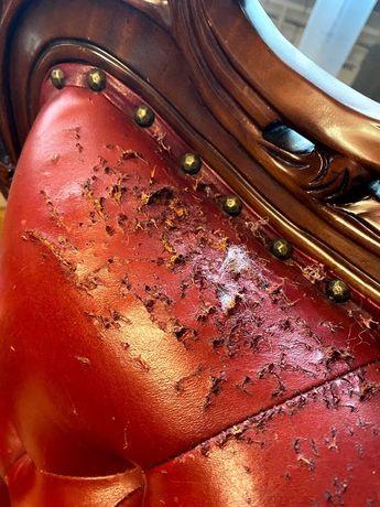 Пошив ремонт покраска и реставрация кожаной мебели работаем 10 лет.