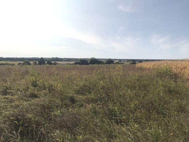 Продам земельну ділянку в с. Ільківка