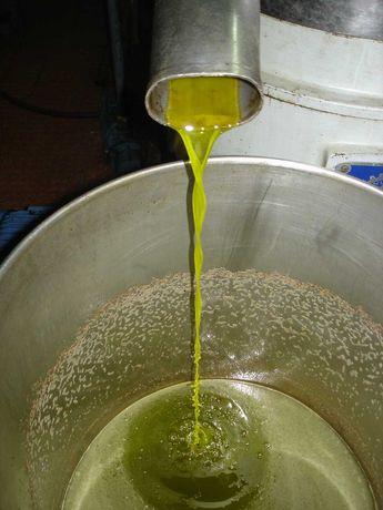 Azeite caseiro de excelente de 0.2 décimas de acidez