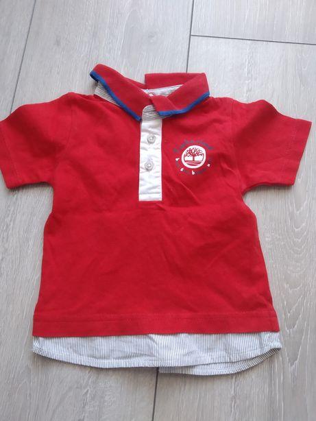 Koszulka polo Timberland
