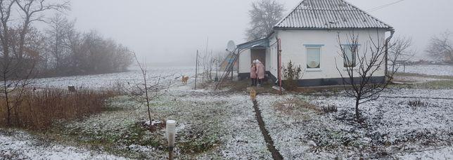 Магдалиновка Казначеевка