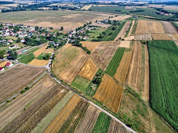 Alternatywa dla Działkowców, działka rolna 16 arów
