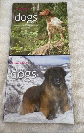 Książki/albumy - rasy psów Eukanuba po angielsku, dwa tomy