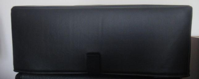 Marshall DSL 100H + capa profissional