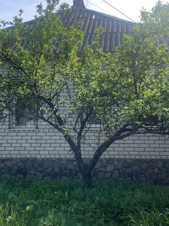 Целый дом в Районе пр.Гагарина,ост.Школа