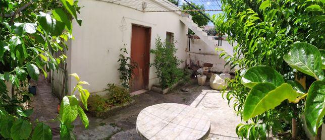 Apartamento com quintal, anexo e terraço - Só particulares