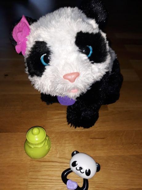 Panda Pom Pom, zabawka interaktywna