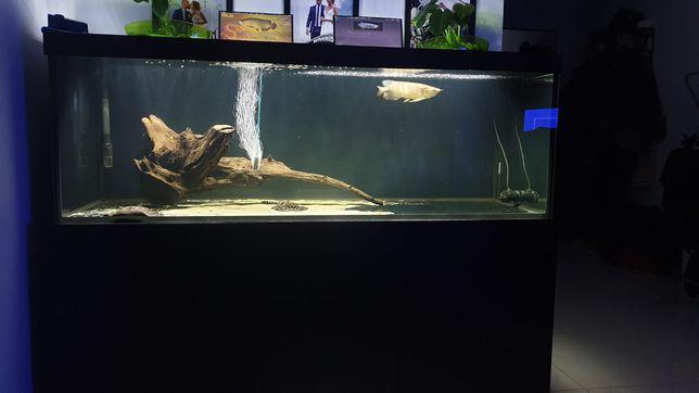 Sprzedam akwarium 170x70x60
