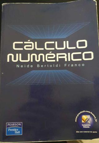 Livro Cálculo Numérico (Métodos Numéricos)