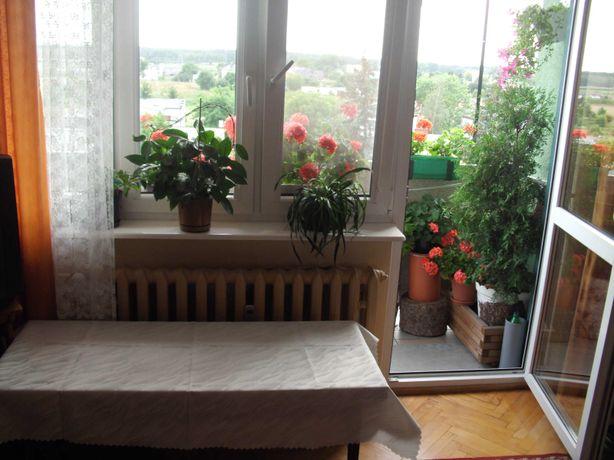 Bezpośrednio- Ciechocinek 4 pokoje, 57m2, duży balkon, piwnica 10m2
