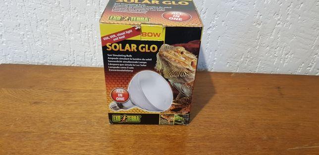 Solar glo żarówka do terrarium 80w