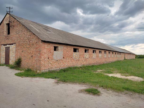 Продам приміщення ферми