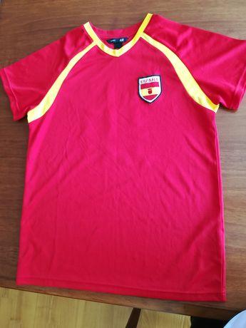 Koszulka, bluzka chłopiec r. 170 sport