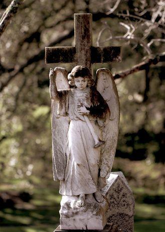 Czyszczenie oraz mycie pomników / Sprzątanie grobów