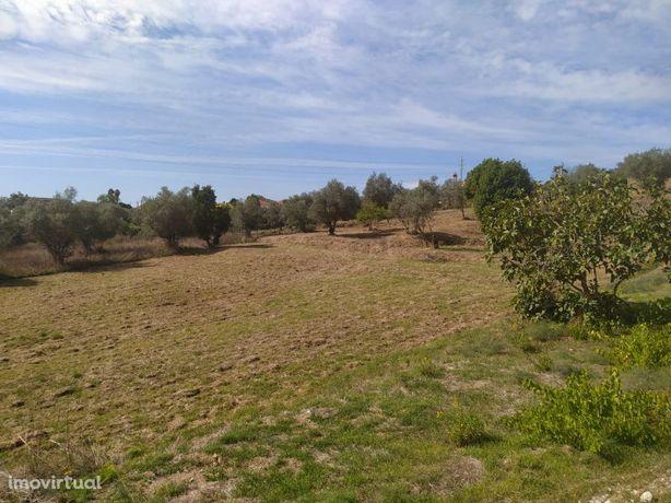 Terreno para construção com 2.400m2 a cerca de 5km da cidade de Tomar