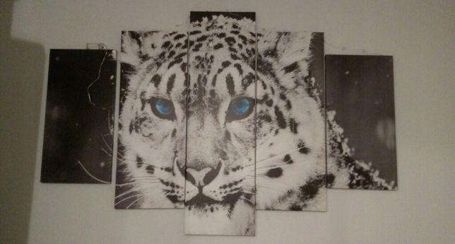 Tryptyk Obraz Tygrys kot drukowany na płótnie 5 części