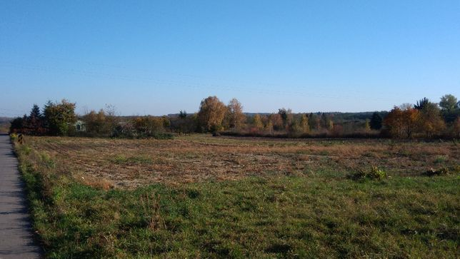 Działka rolna, 35 arów (Ożarów, gm. Jastków)