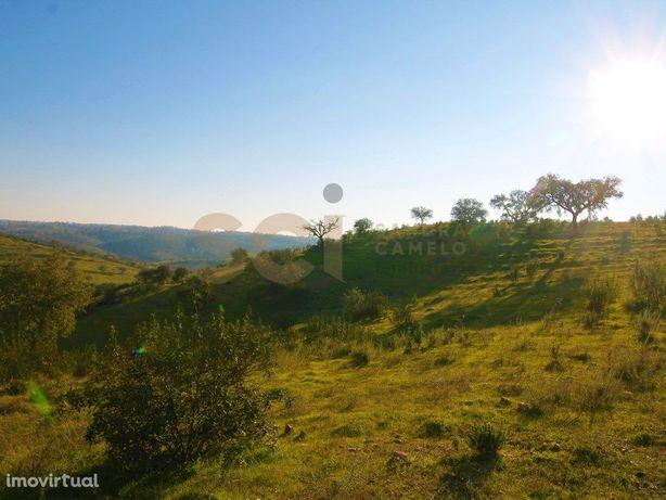 Herdade com cerca de 24 hectares na serra de Serpa com vi...