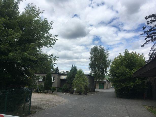 Syndyk sprzeda nieruchomość w Mosinie