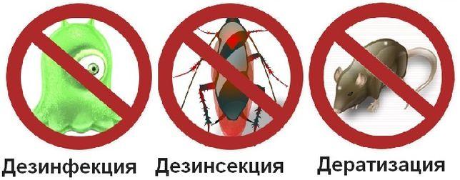 Уничтожение тараканов, клопов, блох, мух, грызунов, дезинфекция