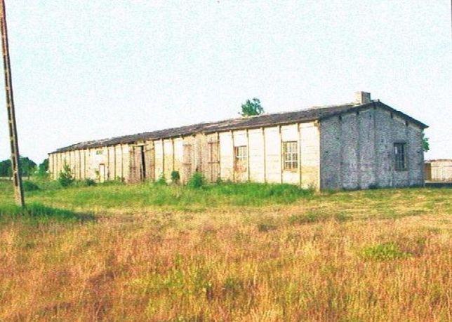 Działka przemysłowo-usługowa / 0,5 ha / Krzepielów, lubuskie