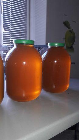 Продам натуральный мед кориандр+ подсолнух