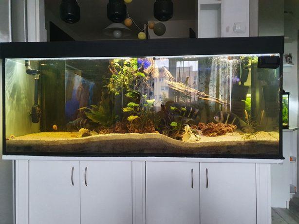 Akwarium 575l 160cm