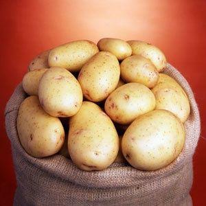 Продам велику картоплю 7 грн.