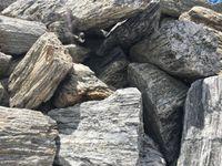 kora kamienna gabionowa, kora dekoracyjna, kamień ogrodowy