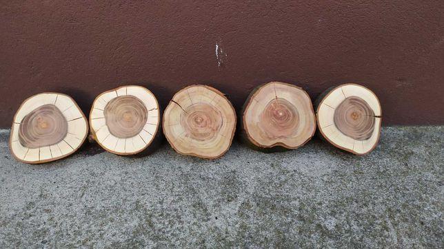 Plastry drewna z drzew owocowych