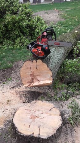 Wycinka drzew, rebak do galezi usługa ciecie piła spalinową