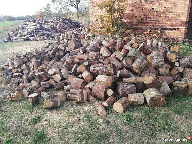 Drewno drzewo opałowe SOSNA, BRZOZA, DĄB