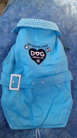 Куртка джинсовая новая для собаки Голубой цвет