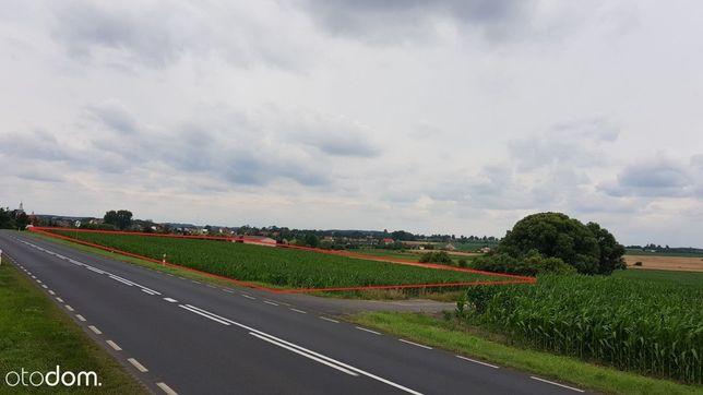 Działka 2 hektary, bezpośrednio przy DW 434
