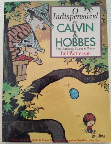 Livro BD Calvin & Hobbes