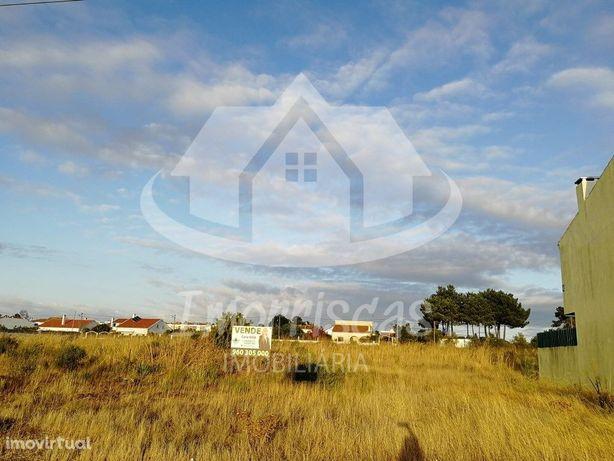 OPORTUNIDADE - Lote de 3 terrenos em Pinhal de Frades