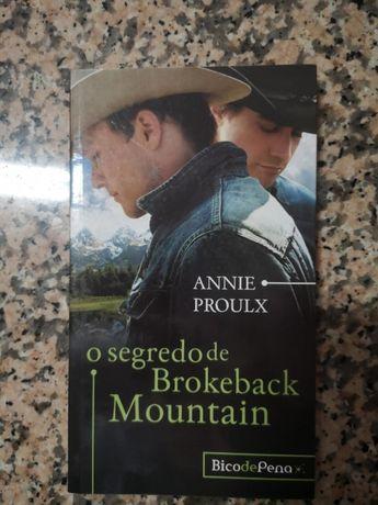 """""""O Segredo de Brokeback Mountain"""""""