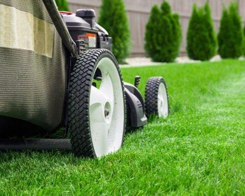 Koszenie trawy nieużytków usługi ogrodnicze,przeprowadzki