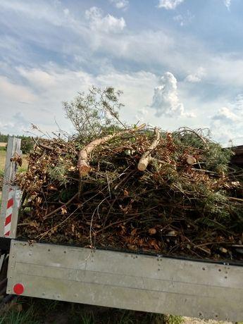 wywòz gałęzi odpadów zielonych porządkowanie działek wycinka drzew