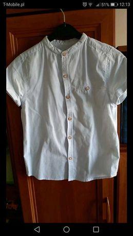Koszula krótki rękaw
